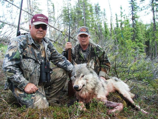 Double Diamond Wilderness Hunts photo gallery