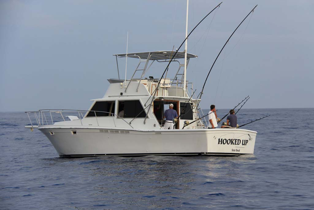 Hooked Up Sportfishing photo gallery