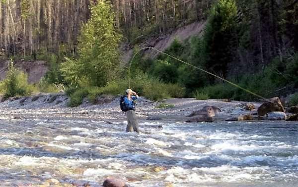 Swan Mountain Outfitters Montana Fishing Trips