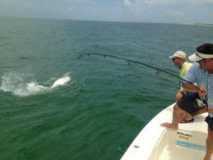 Captain Morgan Fishing photo gallery