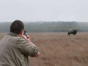 Australian Buffalo Hunters photo gallery