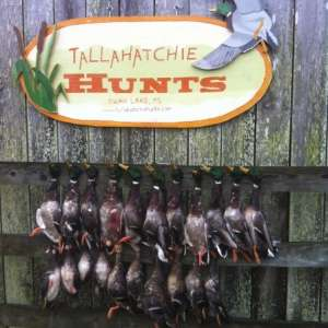 Tallahatchie Hunts