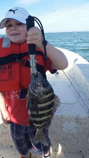 Saltwater Light - Tackle Sportfishing