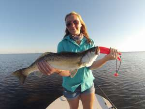 Schooled Up Redfish Charters photo gallery
