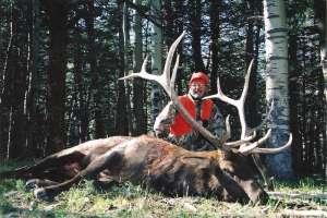 Jack Cassidy Colorado Big Game Hunts LLC