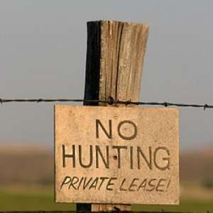 Deer Hunting Lease or Outfitter