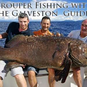 Grouper Fishing with the Galveston Guides
