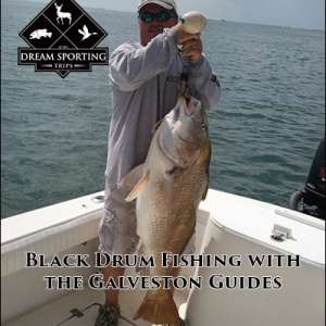 Black Drum Fishing with the Galveston Guides