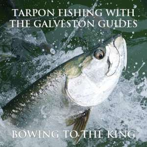 Bowing to the King - Tarpon Fishing with the Galveston Guides
