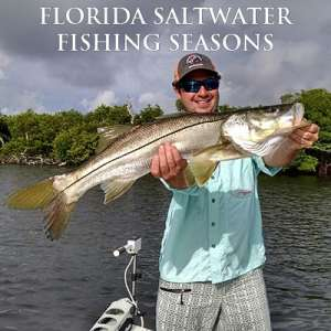 Florida Saltwater Fishing Seasons