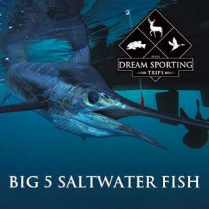 Big 5 Saltwater Fish - Galveston, Texas