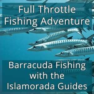 Full Throttle Fishing Adventure - Barracuda Fishing With the Islamorada Guides Image
