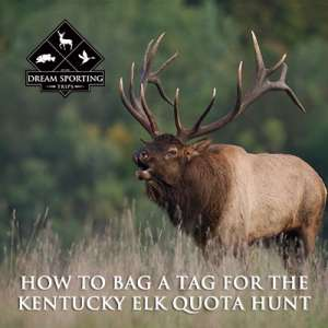 How to Bag a Tag for the Kentucky Elk Quota Hunt