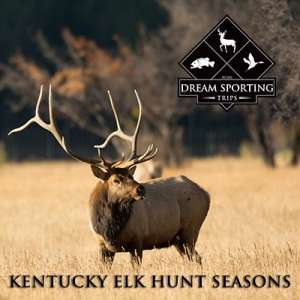 Kentucky Elk Hunt Seasons