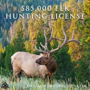 $85,000 for an elk-hunting license in Pennsylvania?