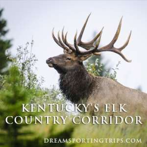 Kentucky's Elk Country Corridor Image
