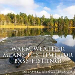 Warm weather means it's time for bass fishing! Image