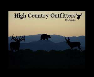 Up Close and Personal with a Bull Elk - Hunting with Chris Moehring, High Country Outfitters