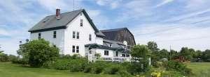 A New England Jewel - Homestead Lodge, Maine