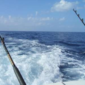 Fishing for Marlin in the Sport Fishing Capital of the World - Islamorada