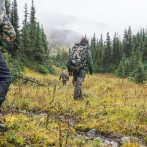 British Columbia Hunting Season Update Image